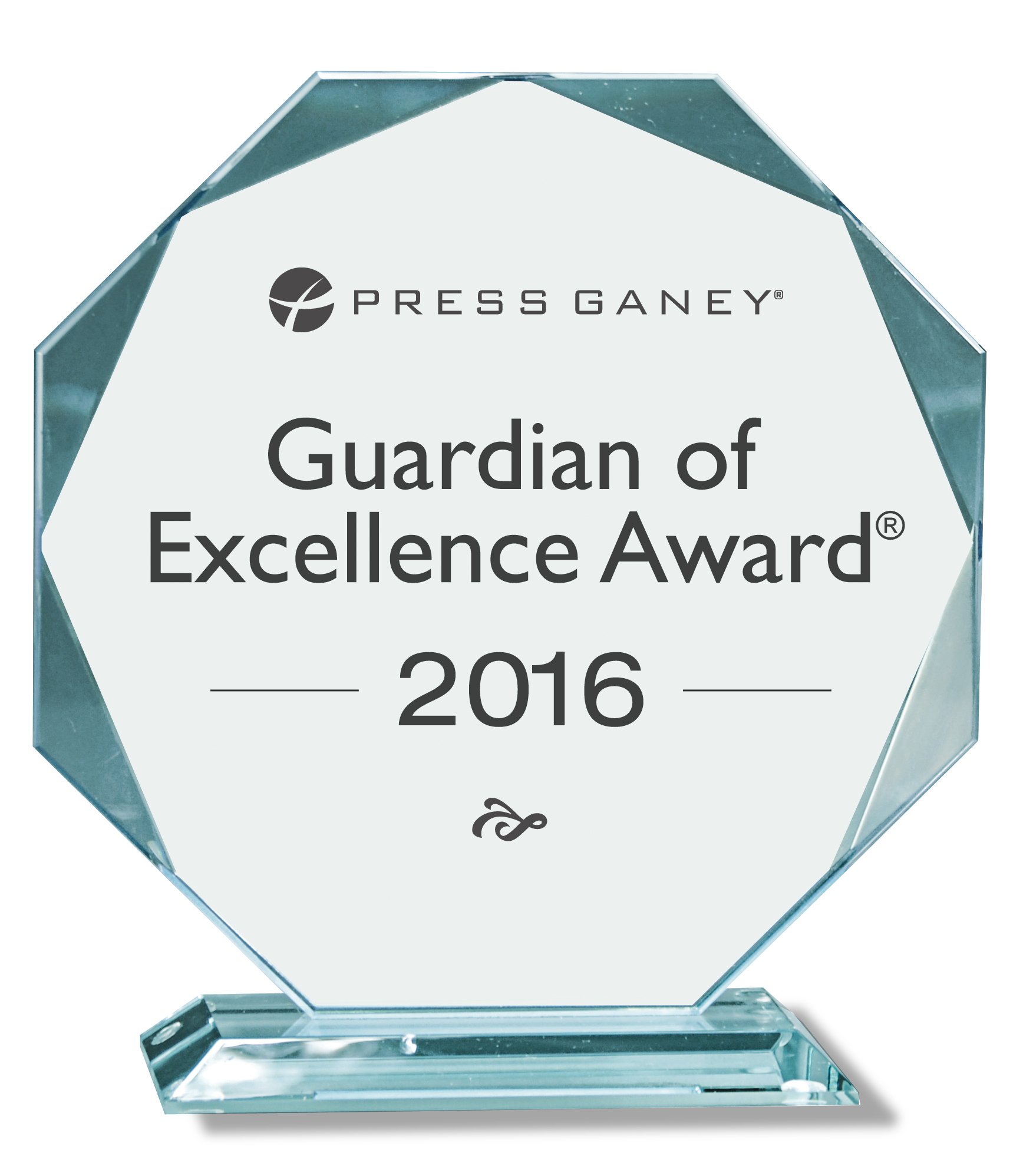 Guardian Excellence Award